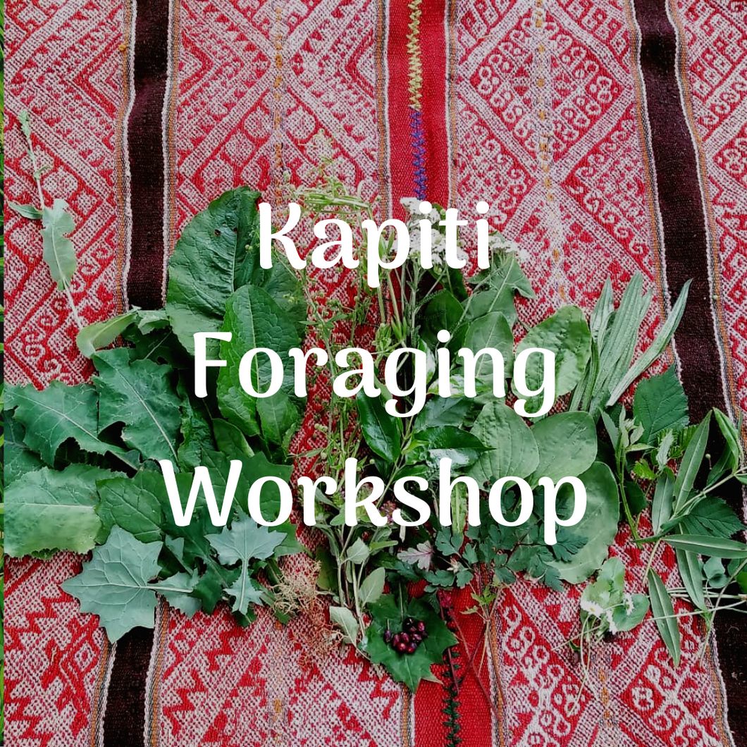 Kapiti Foraging for Wild Edible Weeds Workshops