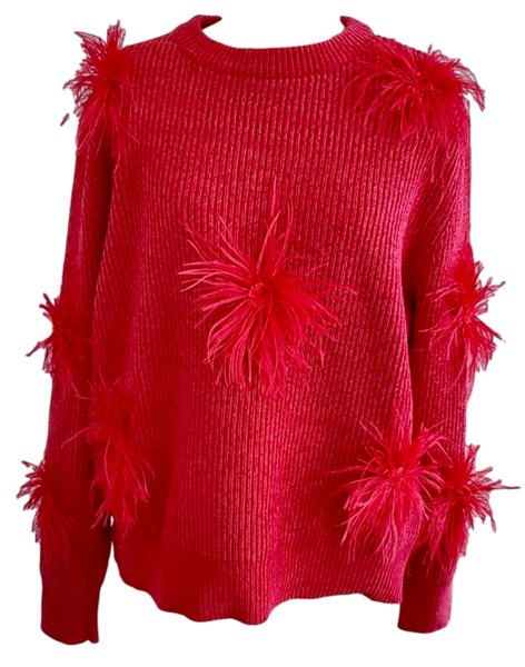 Red/Red Oversized Chenille Feather Sweater