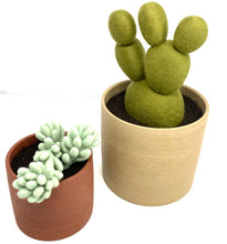 Load image into Gallery viewer, Pair of Handmade Felted Wool Cacti