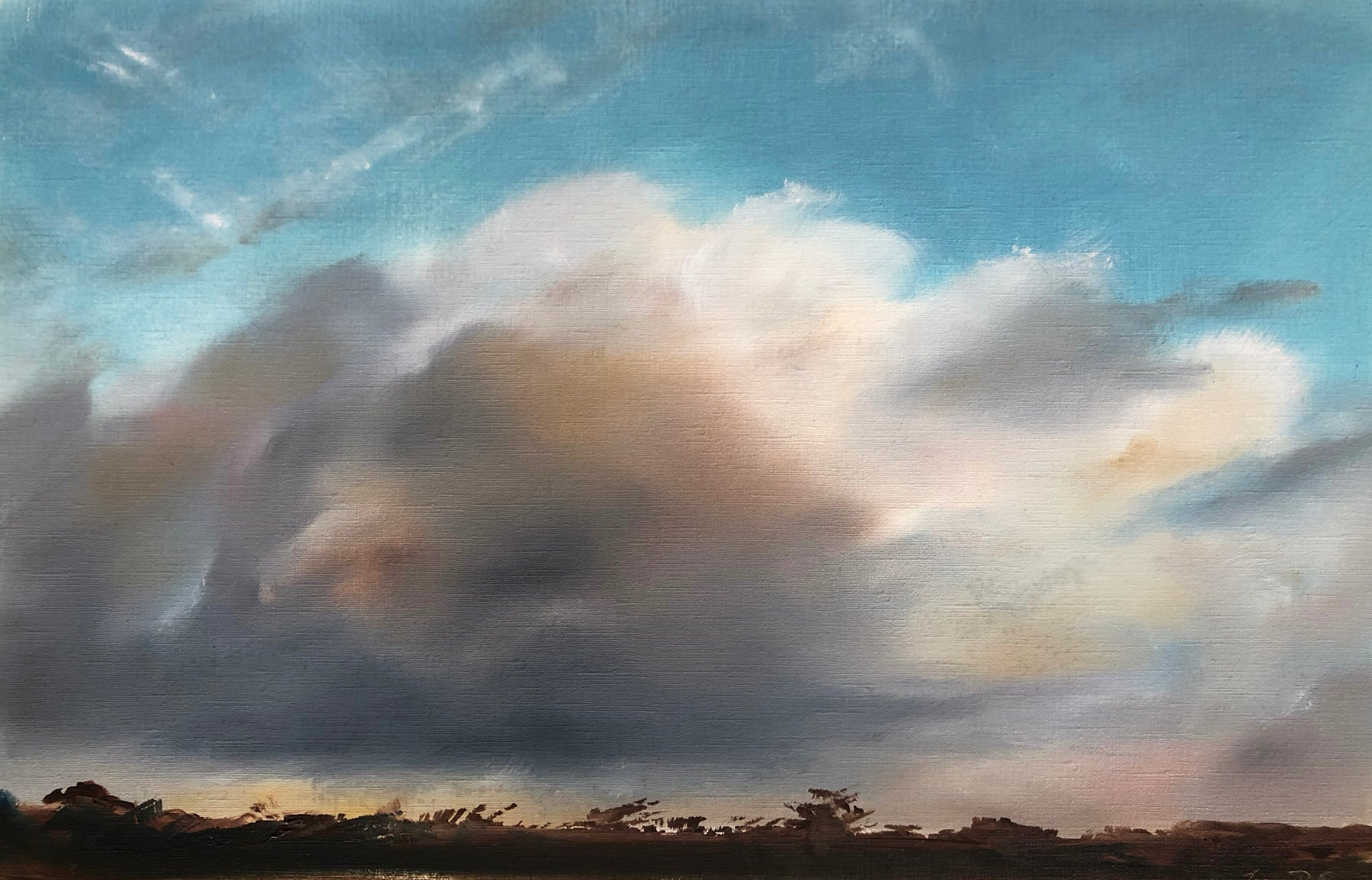 Clouds to the West, Bold Park by Joanne Duffy