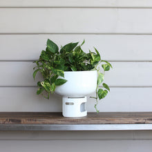 Load image into Gallery viewer, Lil Gas Small Planter - Apple Green