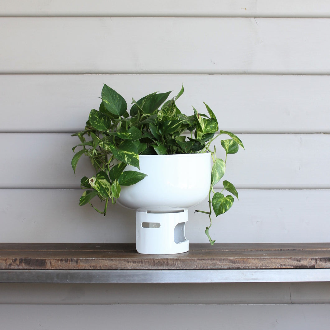 Lil Gas Medium Planter - Matt White