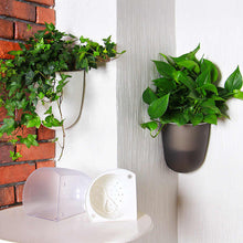 Load image into Gallery viewer, Green Wall Plants - Corner Wall Planters - 2 color options for real plants with a watering system. This indoor wall planter is a great vertical gardening system that can grow real herbs and plants. This modern wall planter will go great indoors or outdoors for a green wall system that will look amazing.