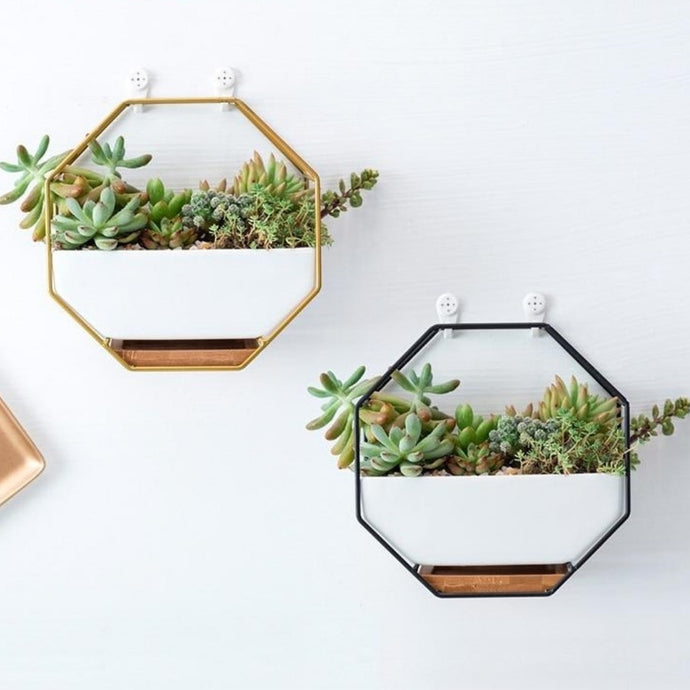 This Iron Wall Hanging Ceramic Planter is an octagonal shaped wrought iron wall basket planter. Can be hung from the wall or displayed on any flat surface. Available in several different finishes that are sure to adorn any interior décor. Create a vertical wall garden or living wall indoors with green wall decor.