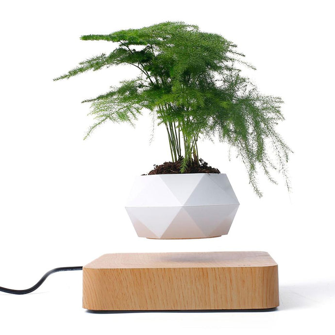 Our Levitating Succulent Planter is the perfect desktop accessory for all green wall plant lovers.  This floating plant pot will hold real or artificial greenery while smoothly spinning around in circles and hovering above the base with magnetic levitation technology. Floating wall planter for a green living room or office display.
