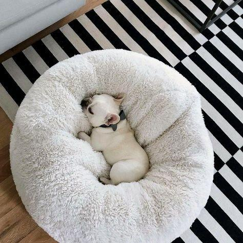 DoggoParadise™ | Cozy Calming Bed™ - Doggo Paradise USA