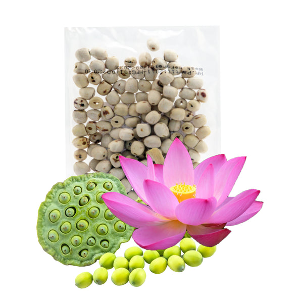Dried lotus seed