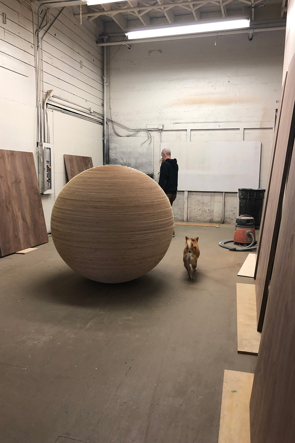 Picture of stacked lamination ball shown in studio next to dog for scale