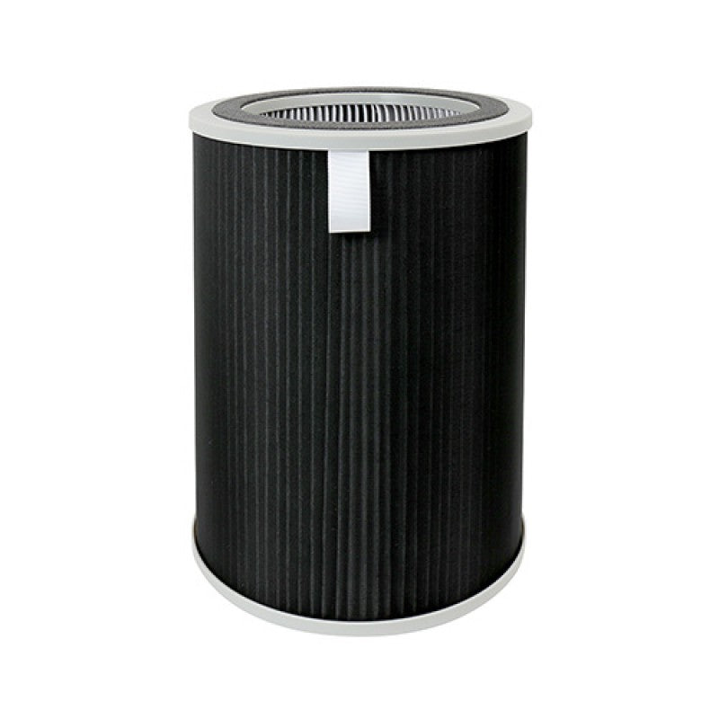 FL-C200 REPLACEMENT FILTER FOR AP-C200
