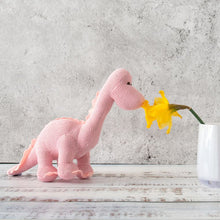 Load image into Gallery viewer, Knitted Pastel Pink Diplodocus Rattle