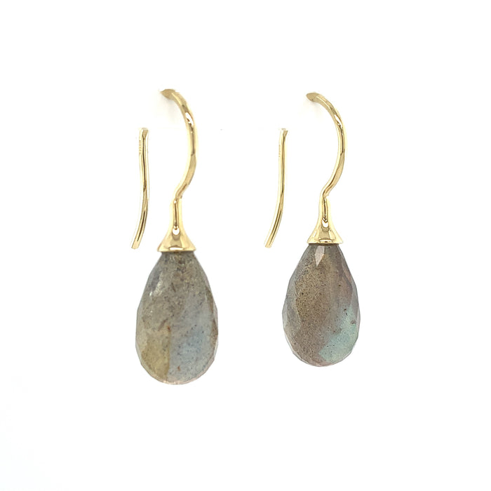 Small Faceted Labradorite Drop Earrings