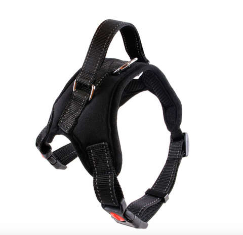 Handle Harness