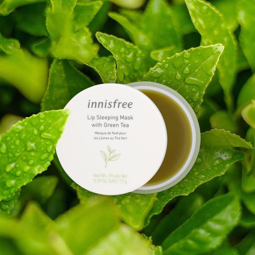 Mặt Nạ Môi Innisfree Green Tea Lip Sleeping Mask - Kallos Vietnam