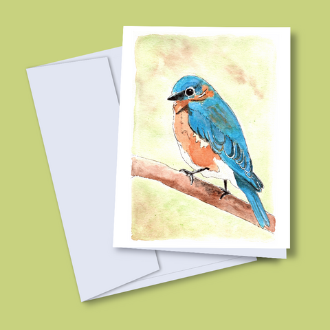 Blank Notecard Set - Eastern Bluebird