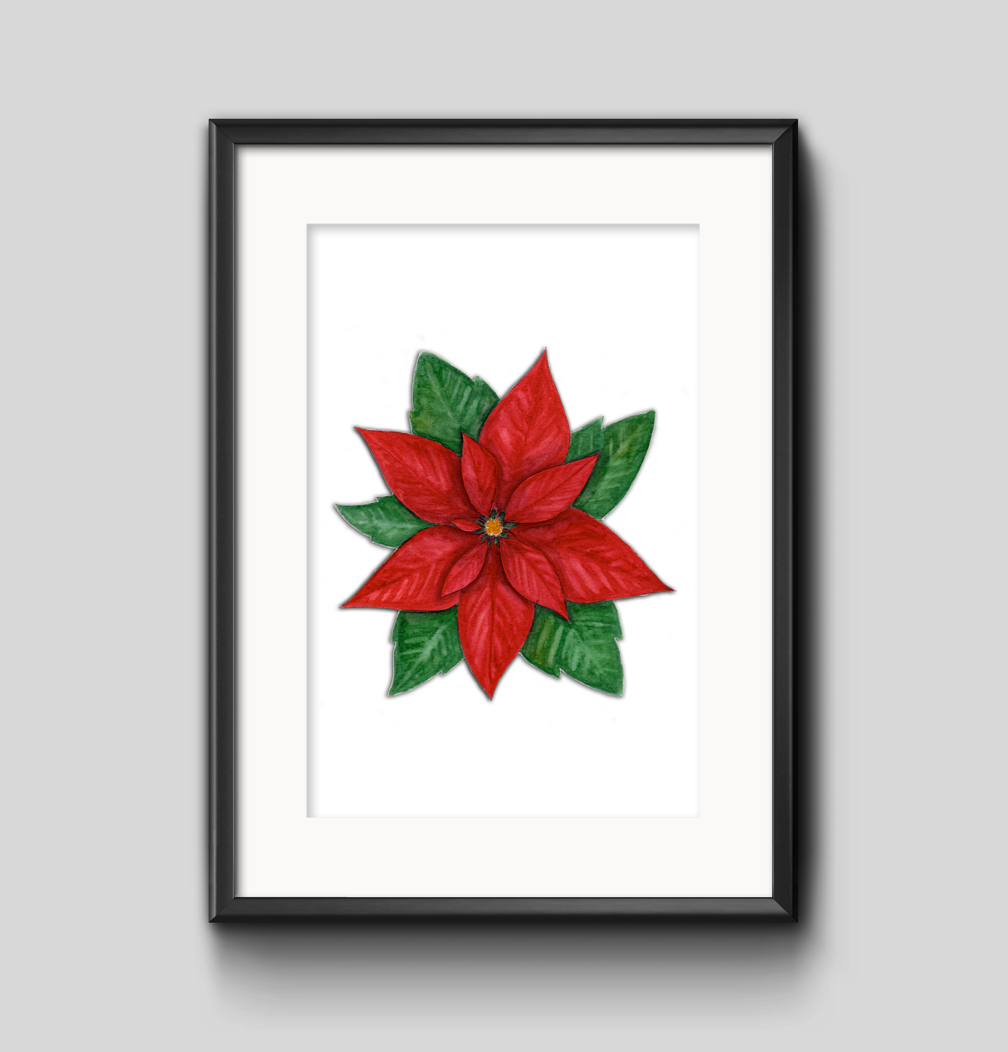 Art Print - Poinsettia