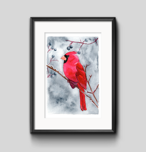 Art Print - Winter Cardinal