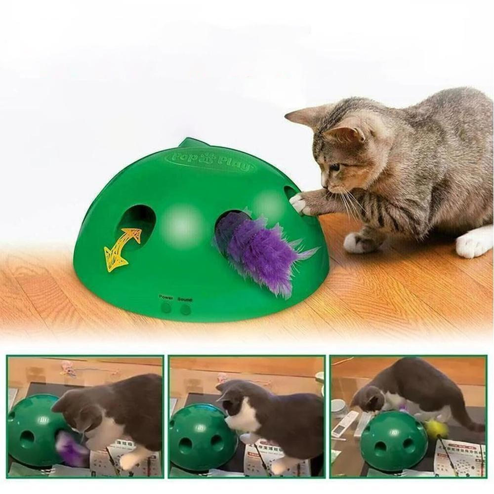 Mysticzone Peek-A-Boo Cat Toy