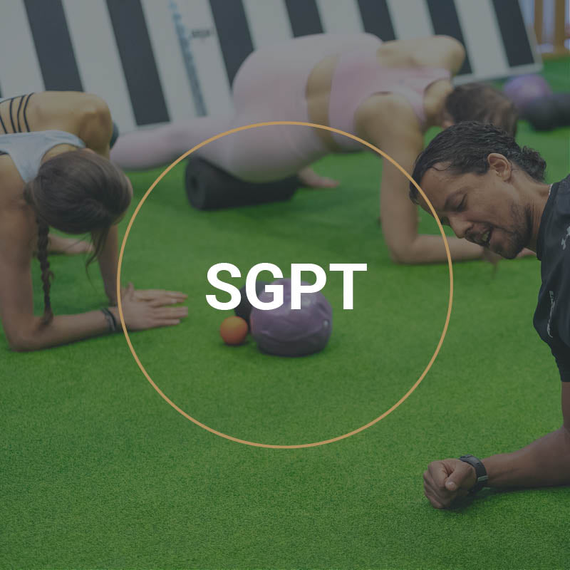 Small Group Personal Trainer