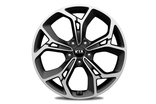 Kia Alloy Wheel Kit 19""