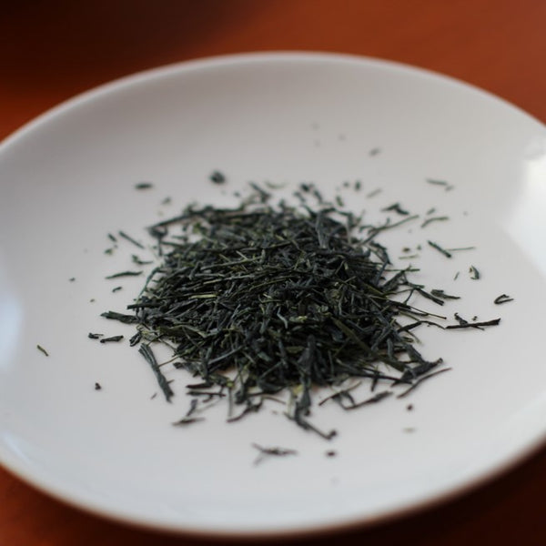 Premium Hand Picked YAME DENTO HON-GYOKURO from Japan 10g