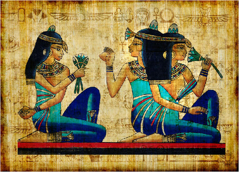 Blue Lotus Ancient Egypt Entheogen Blue lily of the Nile dried flowers
