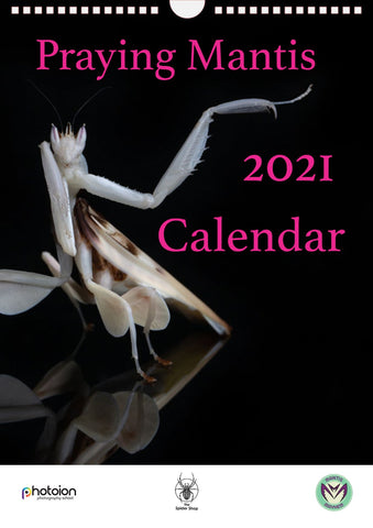 Praying Mantis Calendar 2021