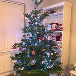 8-9 Ft Nordmann Fir Christmas Tree