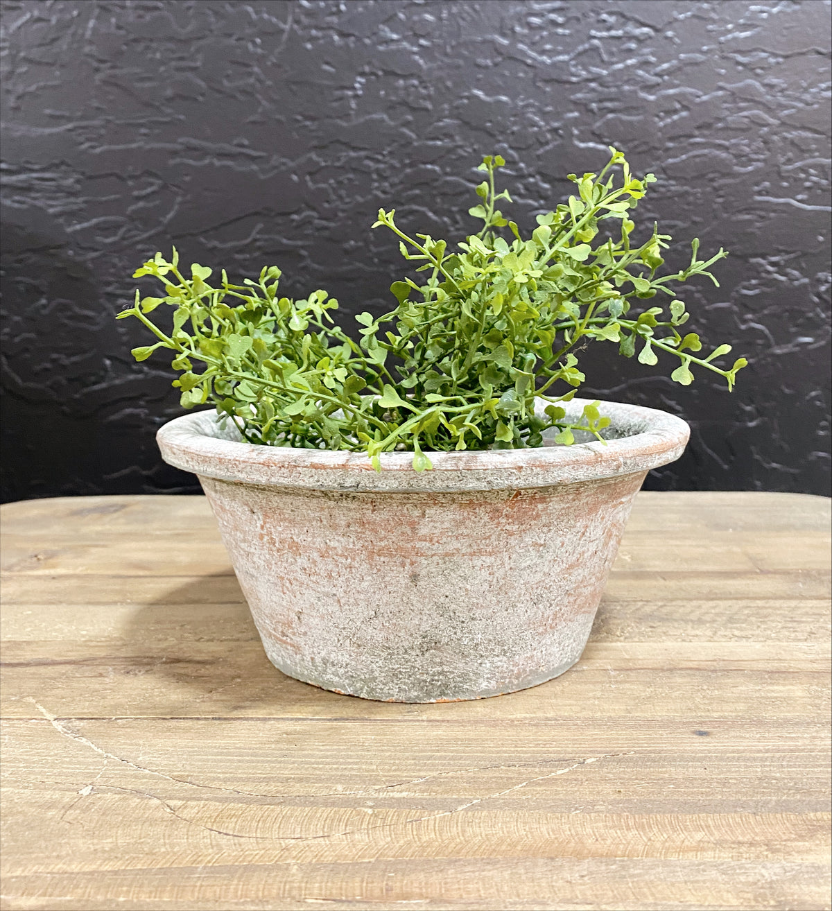 Reclaimed Flower Pot