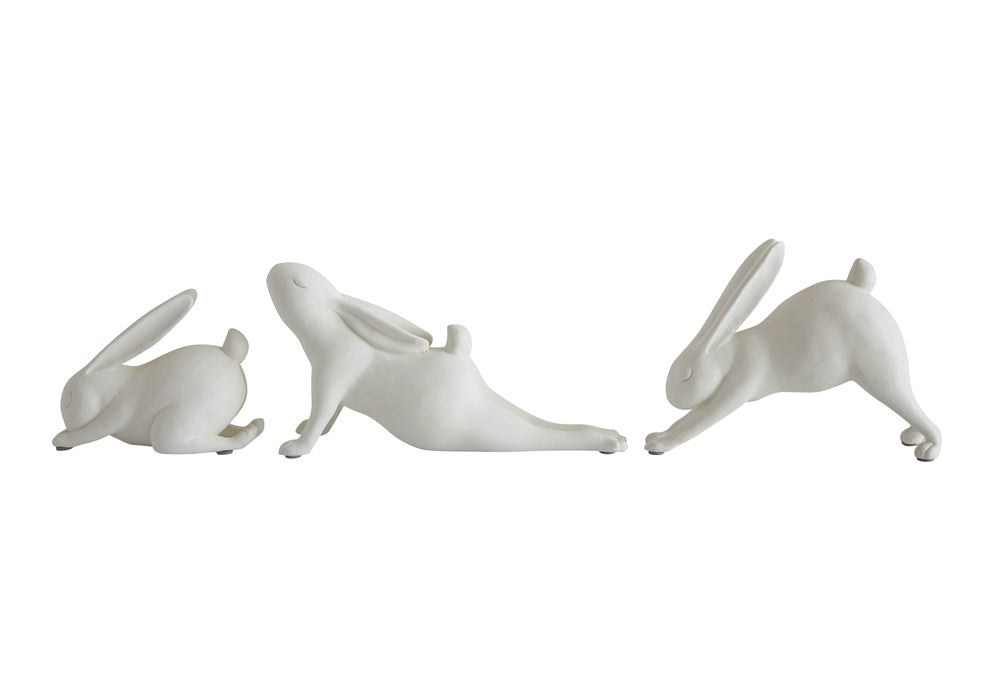 Yoga Rabbit Collection