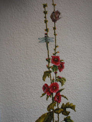 Mouse hollyhock