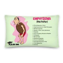 Load image into Gallery viewer, Pink Puffer Emphysema pillow for students