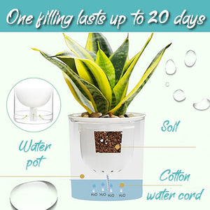 Self-Watering Plant Pot