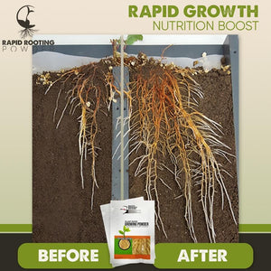 Plant Rapid Growing Powder