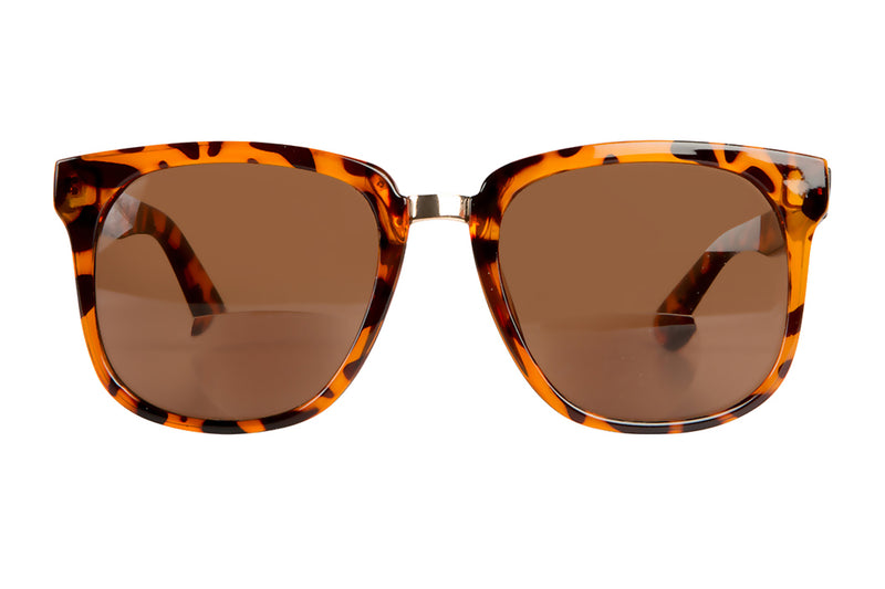 SB-NOVA demi brown Bifocal Sunglasses