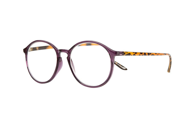 TED transparent purple-demi brown Reading Glasses