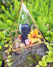 Load image into Gallery viewer, 10/17 No Face Glass Terrarium
