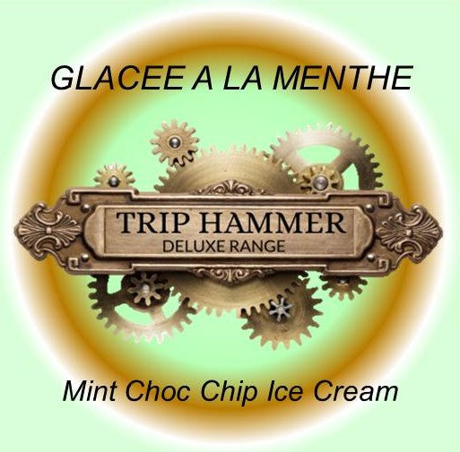 Mint Choc Chip Ice Cream
