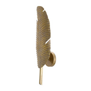 Mustique Wall Sconce