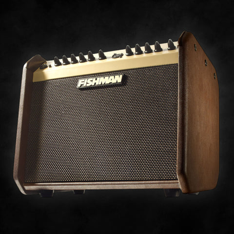 Fishman LBX-500 Loudbox Mini