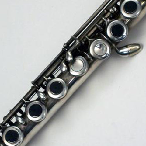 Runyon Flute Touch Tips Finger Positioners