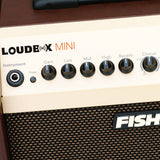Fishman LBX-500 Loudbox Mini Bluetooth