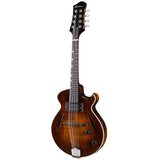 Eastman El Ray Electric Mandolin
