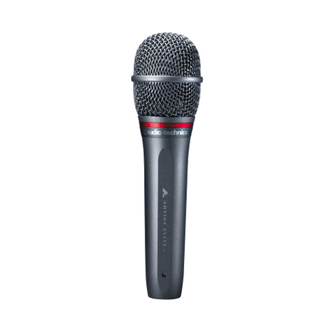 Audio Technica AE6100 Hypercardioid Dynamic Microphone
