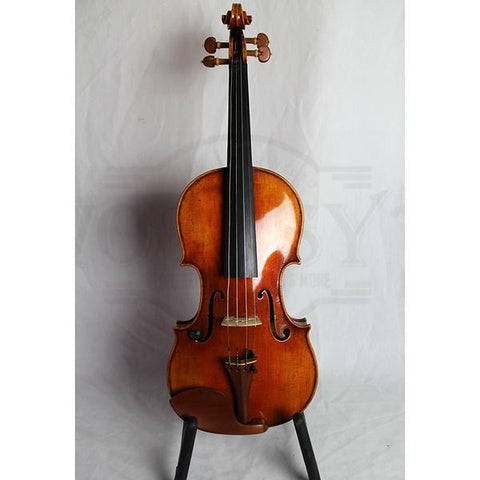 Eastman Strings Raúl Emiliani VL928 Professional Violin