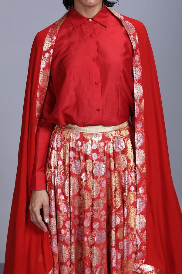 Women's Mano Gold-Silver Brocade Lehenga - Red colour, panelled