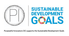 PI and SDGs logo