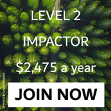 Level 2 Impactor Join Now