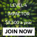 Level 4 Impactor Join Now