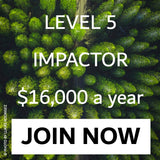 L5 Impactor Join Now