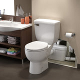 Saniflo SaniACCESS3 basement bathroom installed